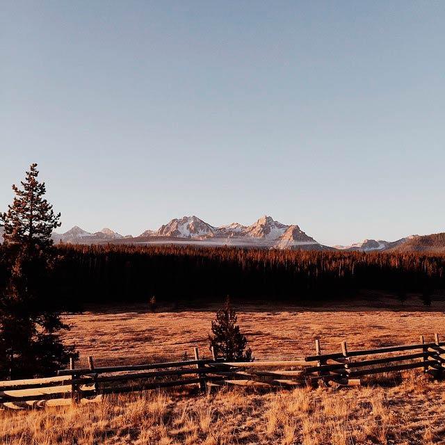 Paisaje de una llanura al amanecer con hiervas secas, y al fondo un bosque de abetos y picos de montañas nevadas. Poppyns Magazine