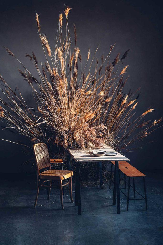 Planta con juncos en forma de abanico sobre una mesa con una silla y un banco de madera. Poppyns Magazine