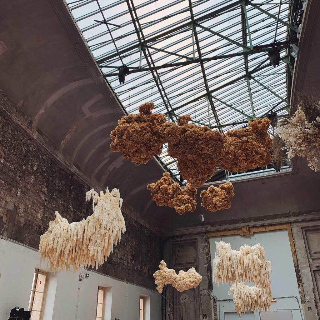 Flores y plantas abstractas colgando de un techo acristalado. Poppyns Magazine